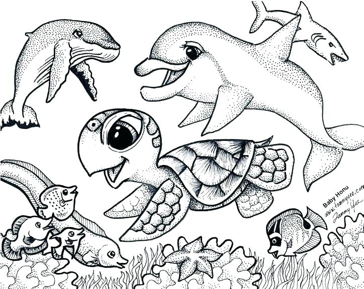 724x576 Cute Coloring Page Animal Coloring Pages Free Ocean Animals