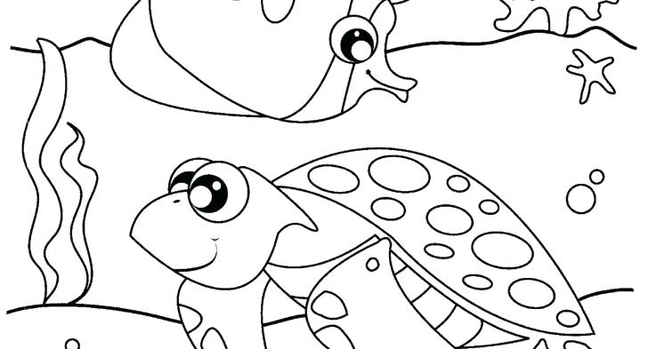 Ocean Animals Coloring Pages For Preschool At Getdrawingscom Free