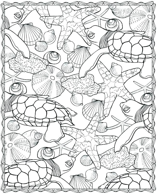 ocean animals coloring pages for preschool at getdrawings