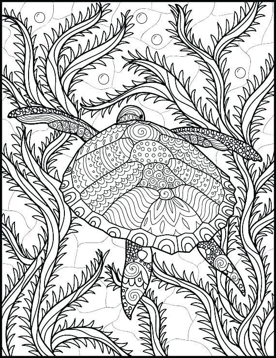 Sea Life Coloring Pages Ocean Coloring Pages For Adults at GetDrawings Free download