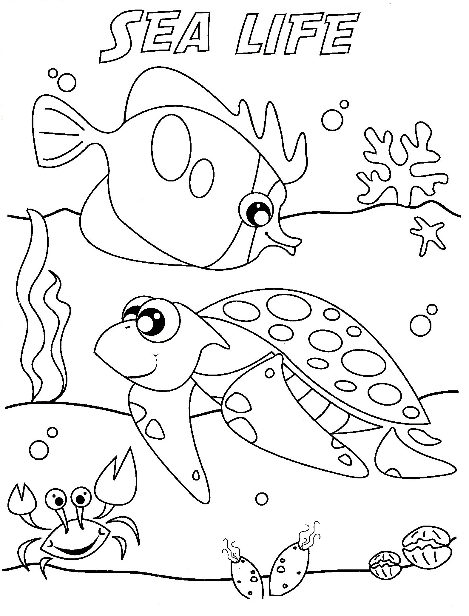 1572x2064 Free Printable Ocean Coloring Pages For Kids Typical Sea Animals