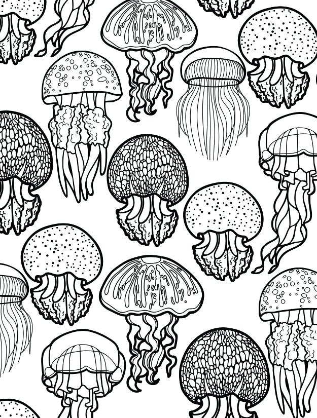 625x825 Printable Ocean Coloring Pages