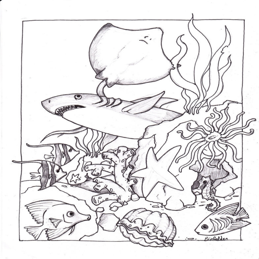 1024x1024 Free Printable Ocean Coloring Pages For Kids Regarding The Awesome