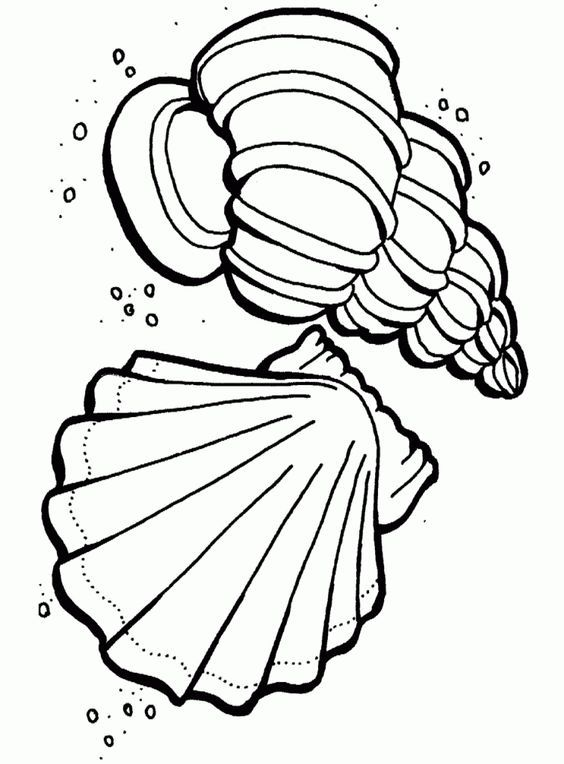564x764 Free Printable Ocean Coloring Pages For Kids