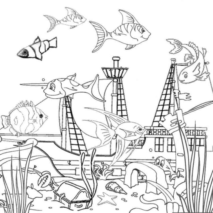 736x736 Best Nature Coloring Pages Images On Ocean Coloring