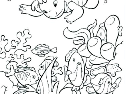 440x330 Ocean Coloring Pages For Kids Ocean Coloring Pages Ocean Ecosystem