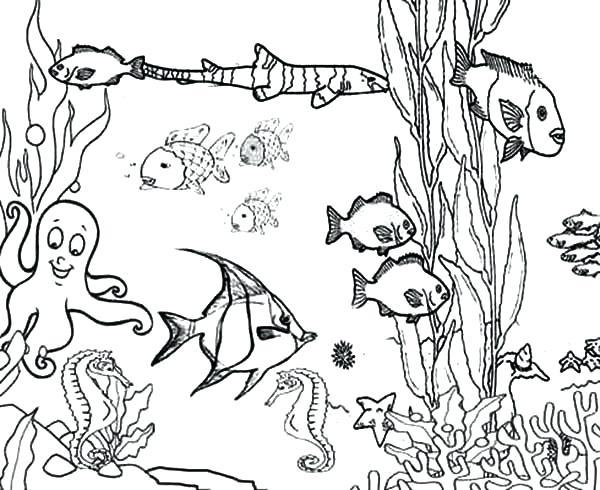 600x490 Printable Ocean Pictures Printable Ocean Coloring Pages Ocean