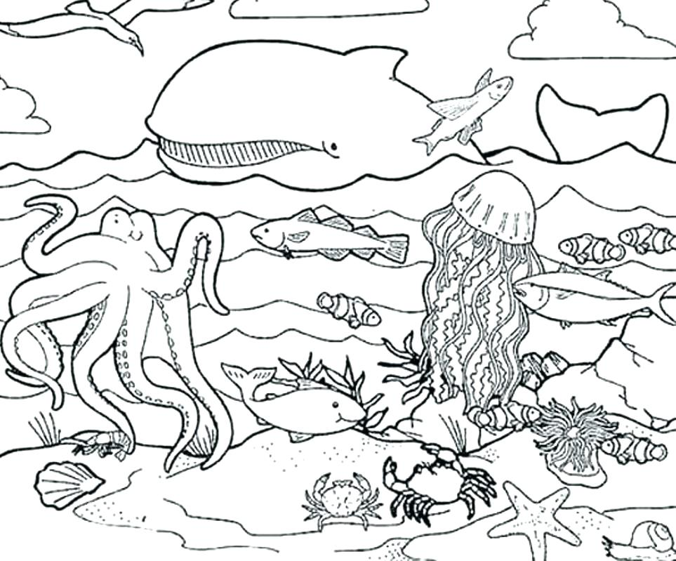 963x799 Ocean Life Coloring Pages Sea Life Coloring Pages Fancy Sea Life