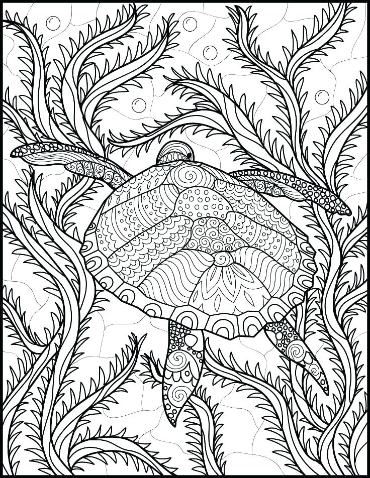 736x952 Ocean Scene Coloring Page Printable Ocean Coloring Pages Free