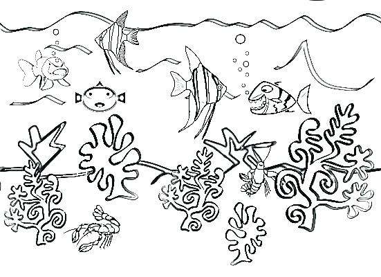 551x400 Ocean Scene Coloring Page Underwater Pages Life Google Search