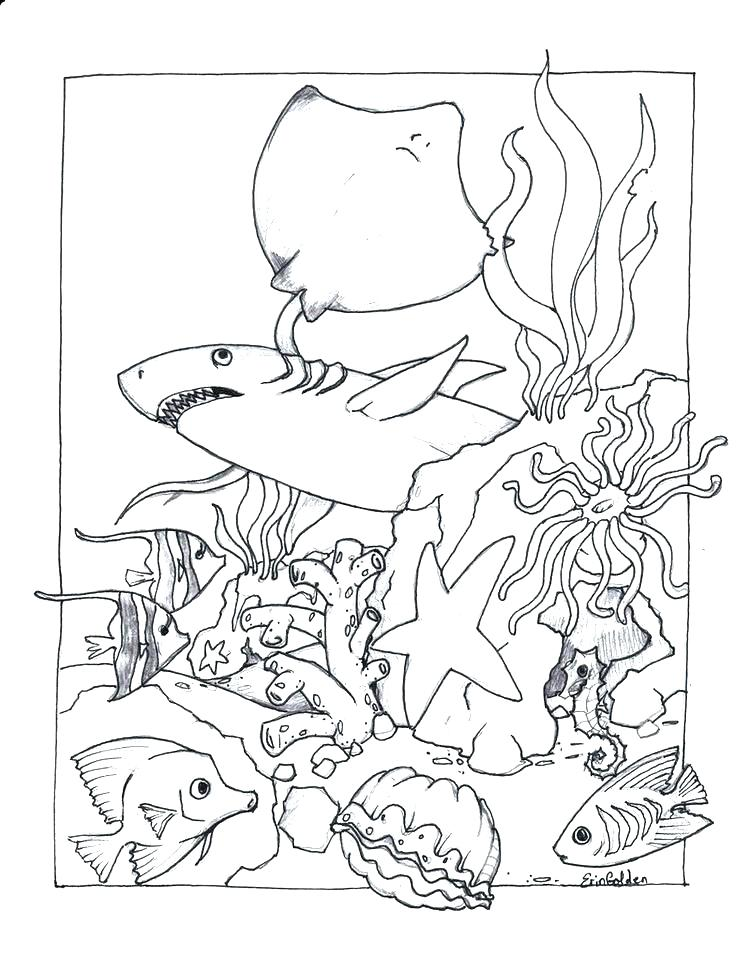 736x954 Ocean Scene Coloring Pages Ocean Coloring Sheets Draw Ocean