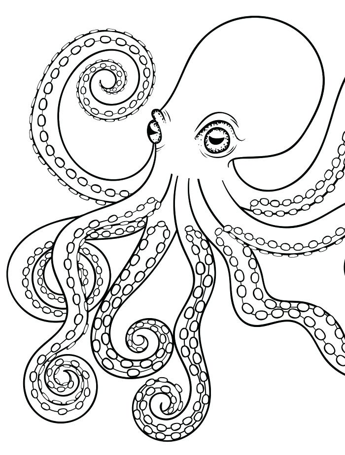 700x924 Octopus Coloring Page Octopus Adult Coloring Page For Adults