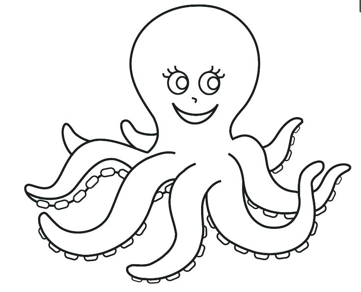 736x596 Octopus Coloring Page Octopus Ocean Coloring Page Octopus Coloring