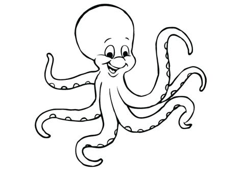 474x332 Octopus Coloring Pages Octopus Coloring Page With Printable