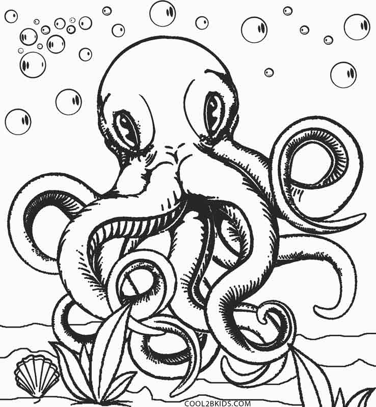738x800 Realistic Octopus Coloring Page Printable Octopus Coloring Page