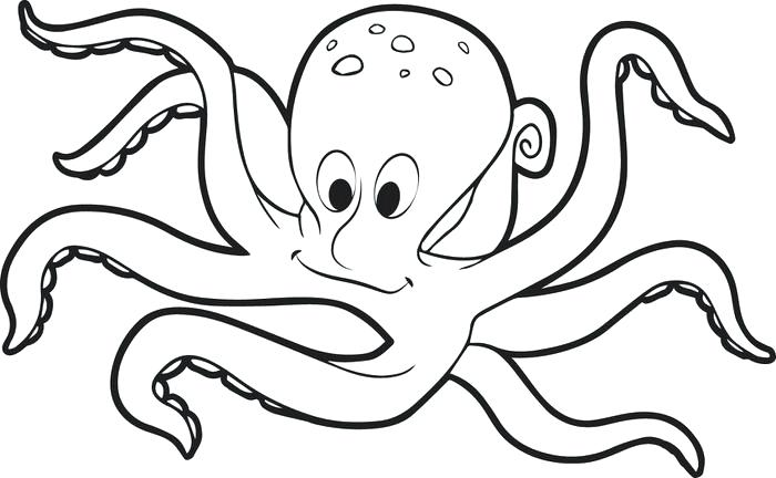 700x432 Octopus Coloring Pages