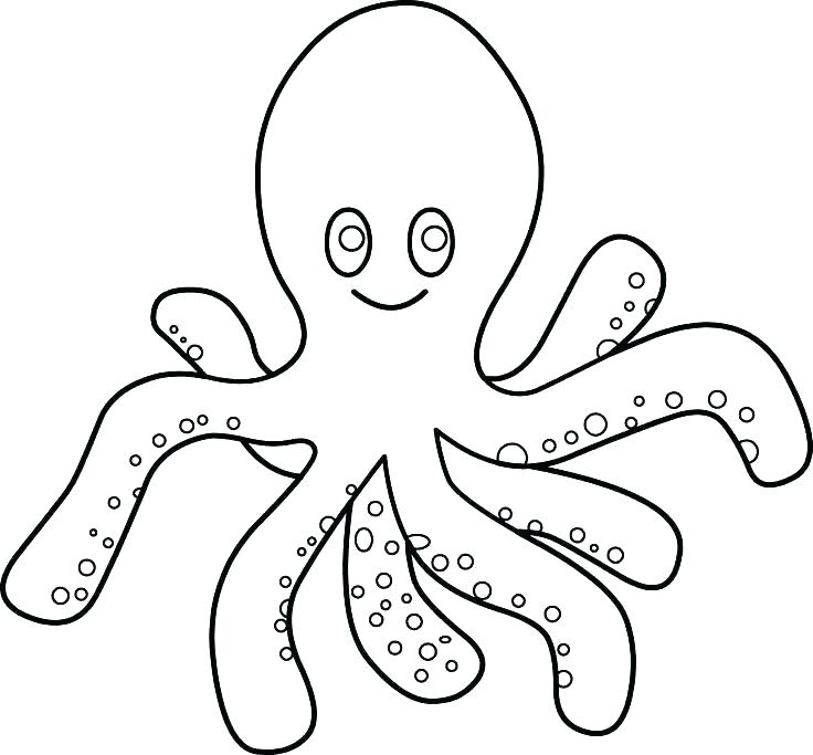 736x683 Coloring Pages Octopus Or Free Printable Octopus Coloring Pages