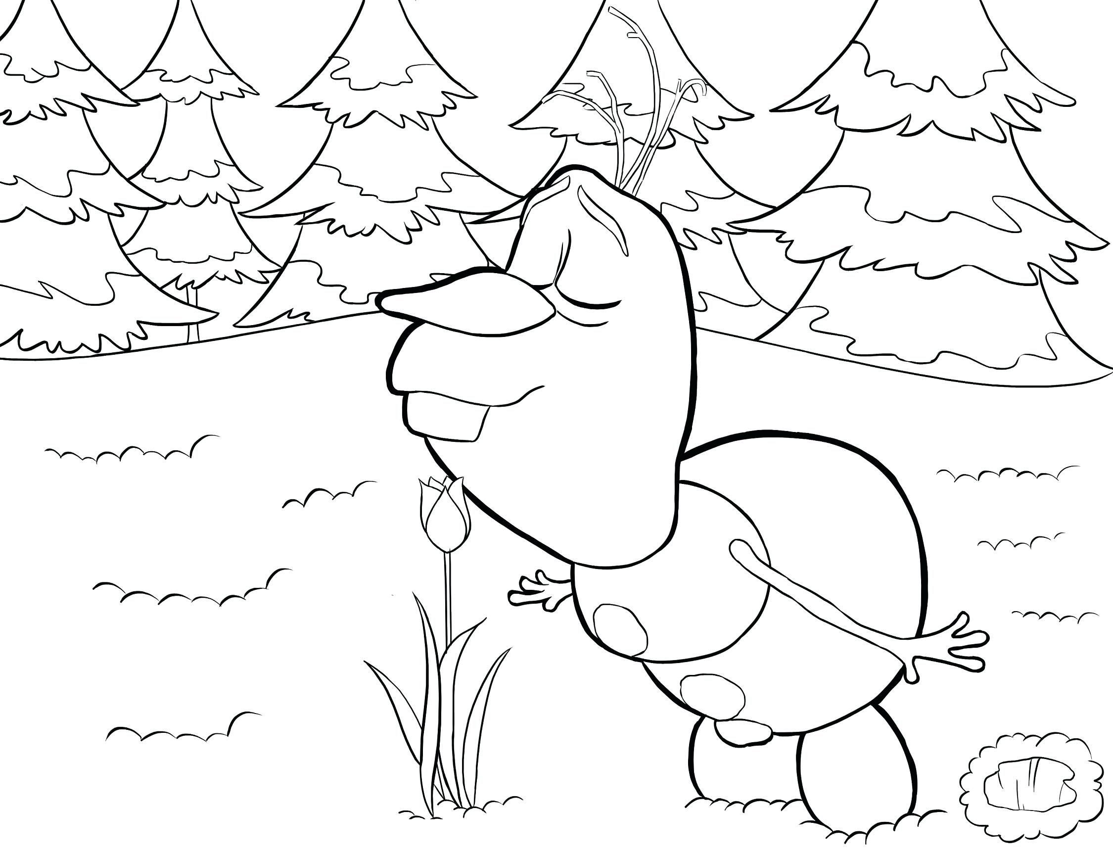 2250x1738 Cute Olaf Coloring Pages Frozen For Free Printable In Summer Boy