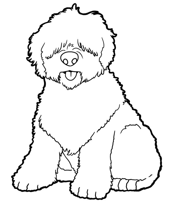 Old English Sheepdog Coloring Pages