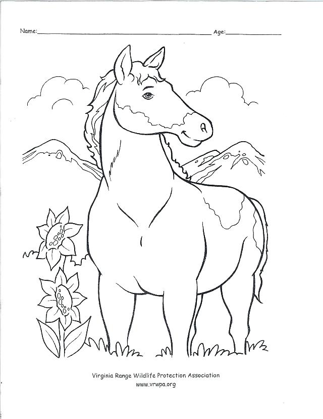 640x828 Free Old West Coloring Pages Kids Coloring Western Color Pages