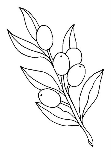 362x512 Olive Coloring Pages