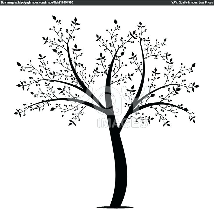 736x736 Olive Tree Coloring Page Coloring Pages Online For Adults