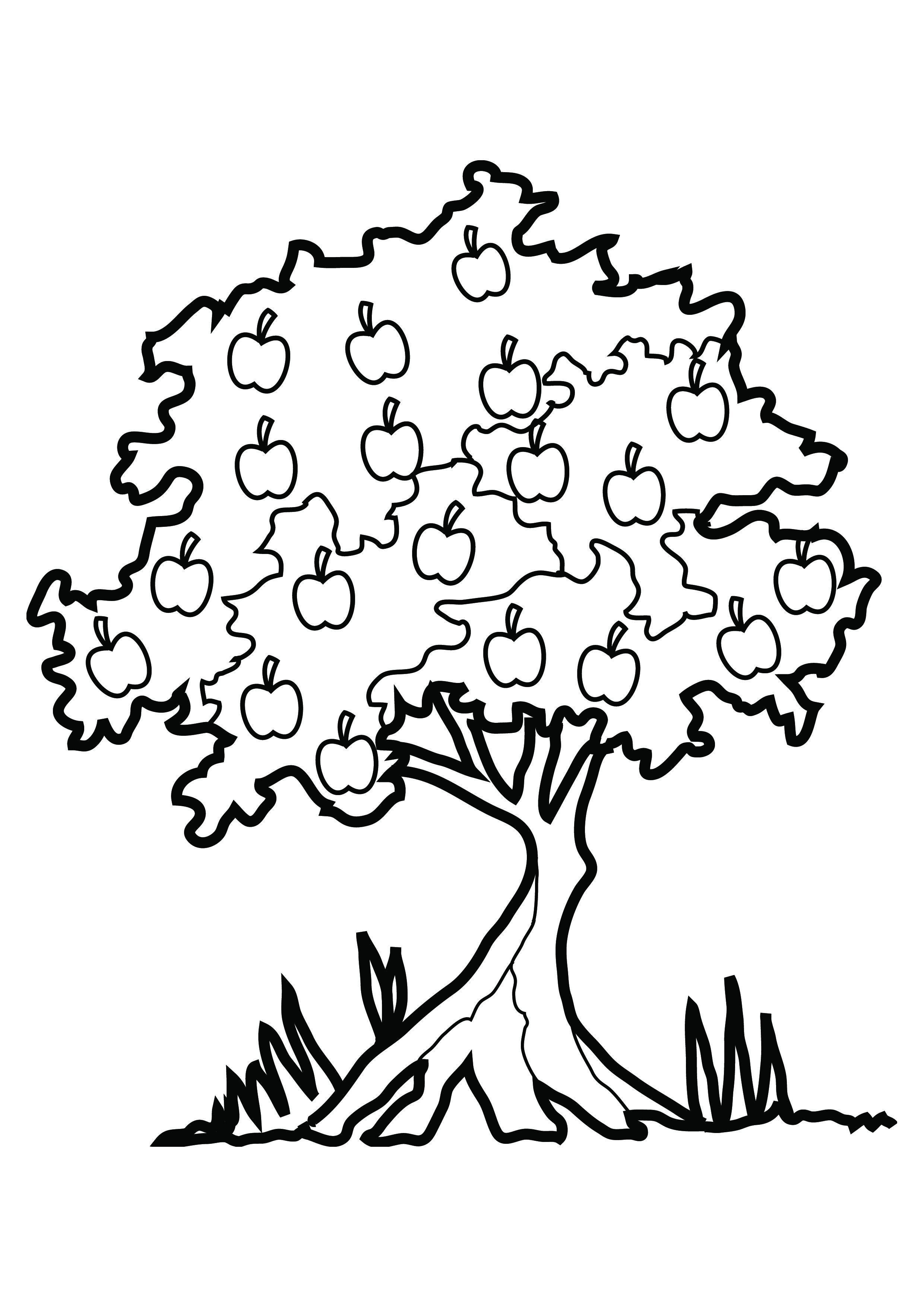2480x3508 Tree Coloring Picture Free Download