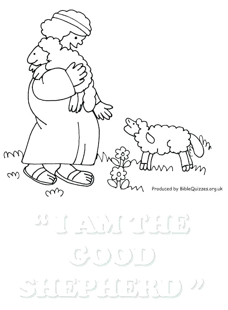 736x1000 Children Bible Coloring Pages