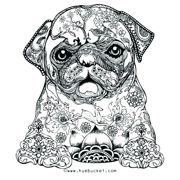 700x700 Awesome Coloring Pages For Adults Adult Stress Relief Coloring