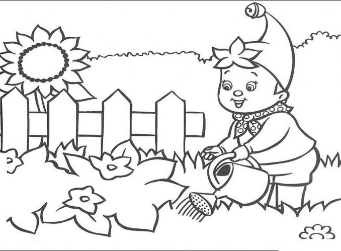678x499 Gardening Colouring Pages Free Coloring Page