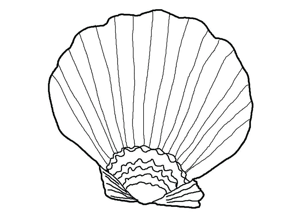 1024x768 Open Book Coloring Page