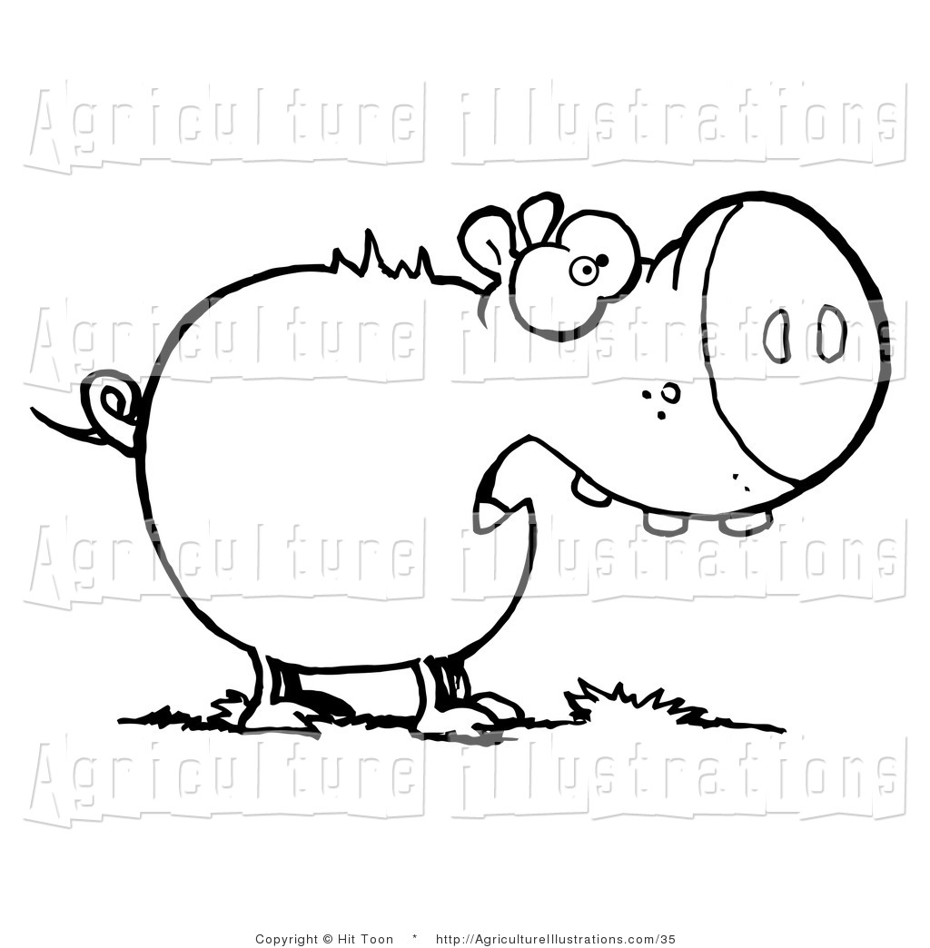 1024x1044 Agriculture Clipart Of A Coloring Page Outline Of A Plump Pig
