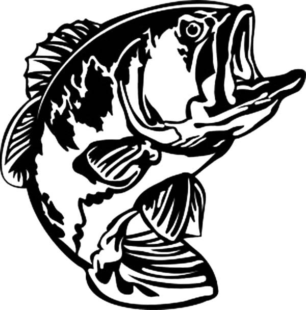 600x608 Bass Fish Open His Mouth Wide Coloring Pages Best Place To Color