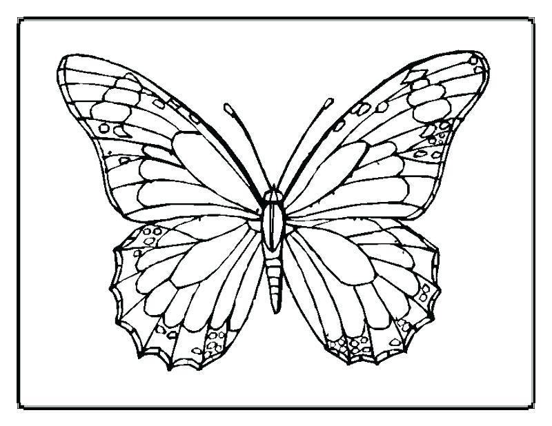 800x618 Optical Illusions Printable