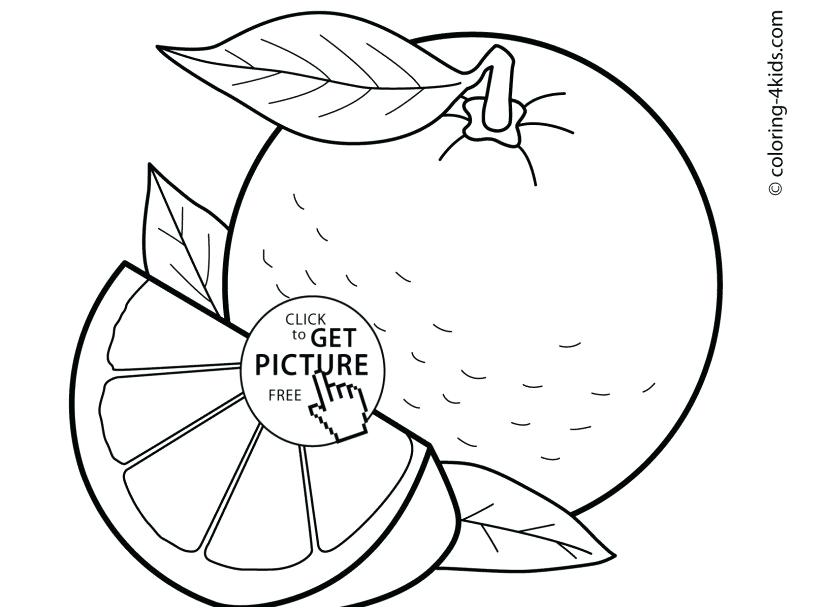 827x609 Orange Coloring Page Coloring Pages Color Orange Photographs Top