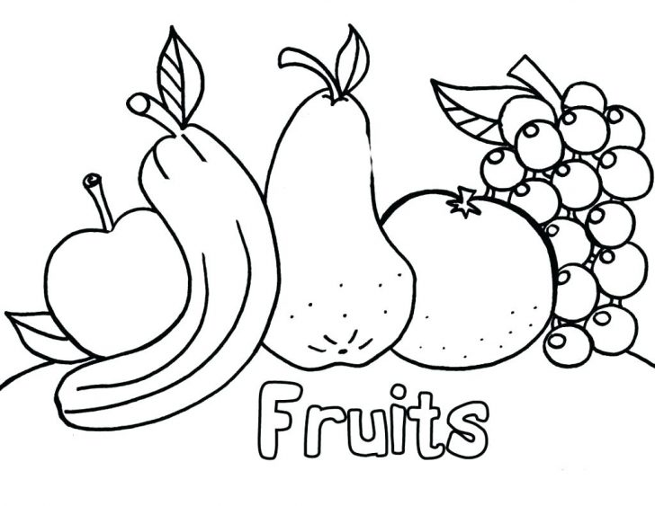 728x563 Orange Coloring Page Fruit Pages Free Marvelous For Toddlers