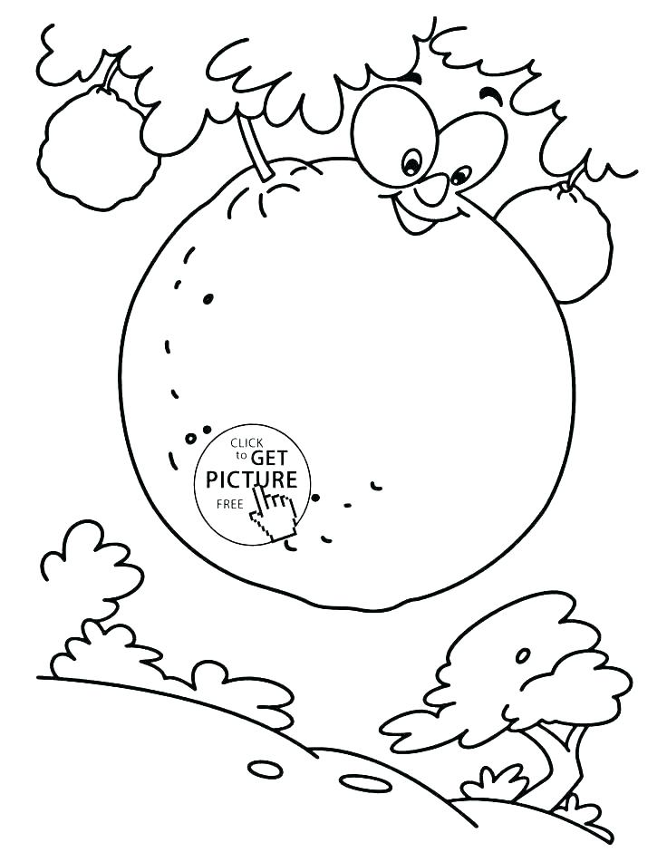 736x951 Orange Coloring Page Orange Coloring Pages Watermelon Colouring
