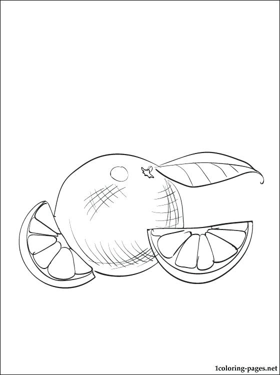 560x750 Orange Coloring Pages Orange Coloring Page For Free Orange Juice