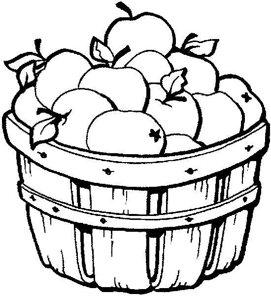 550x599 Apple Coloring Pages