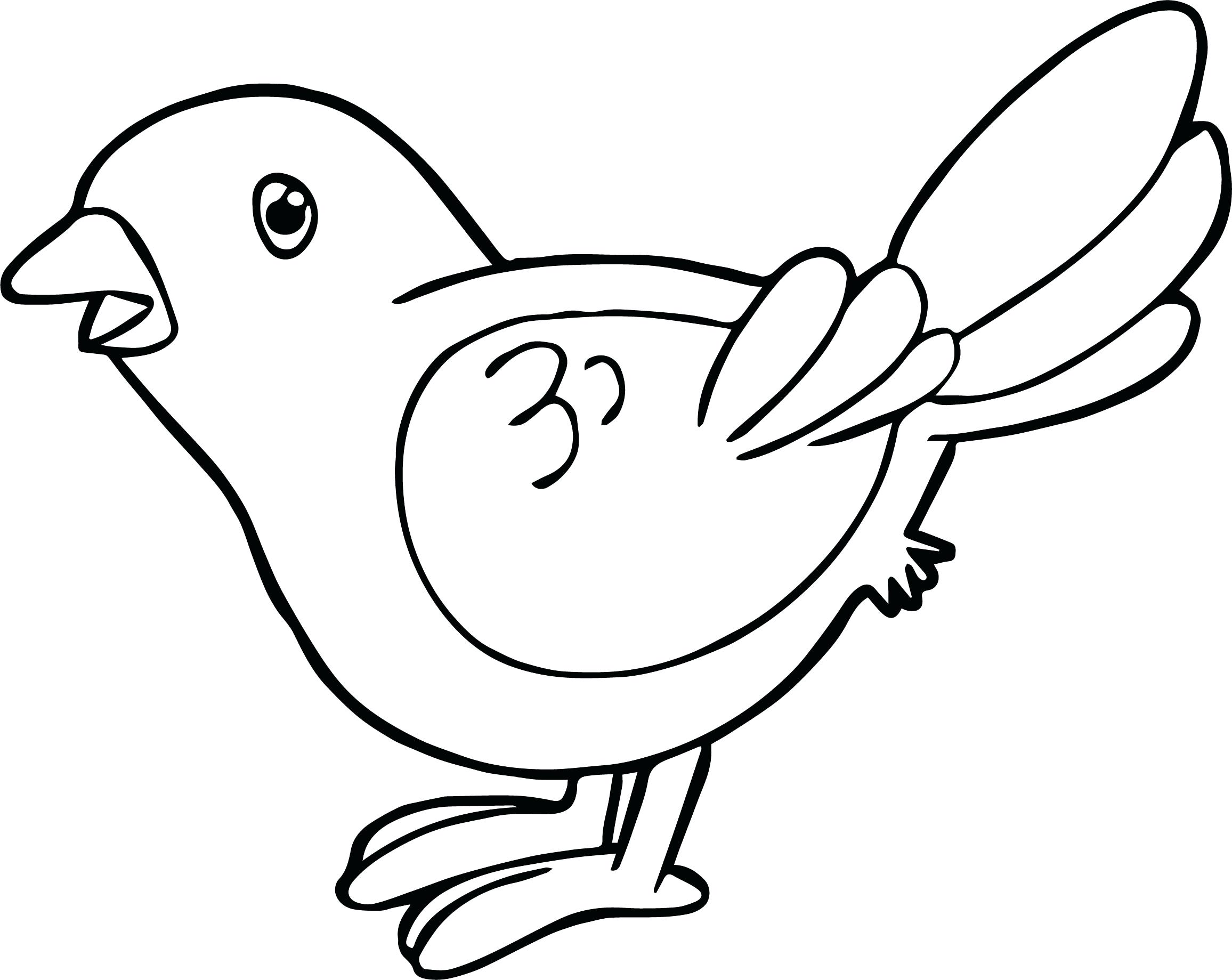 2312x1839 Bird Coloring Page To Print Oriole Free Printable Pages Pictures