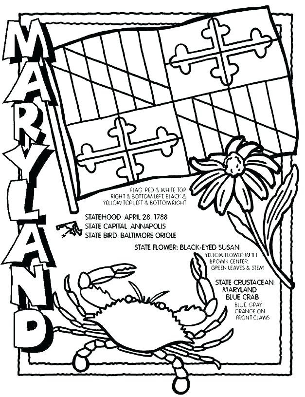 627x815 Coloring Pages For Adults Pdf Orioles Sheet Free Mycosedesongles