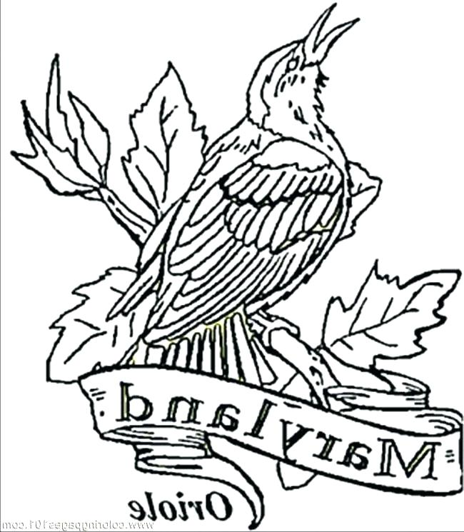650x745 Drake Coloring Pages Orioles Coloring Pages Coloring Pages