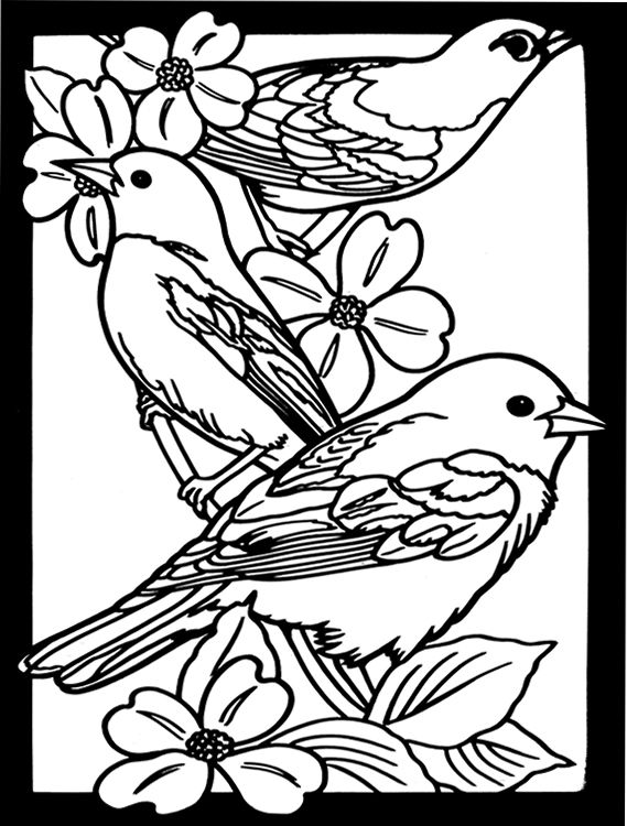 569x750 Favorite Birds Stained Glass Coloring Book Dover Publications