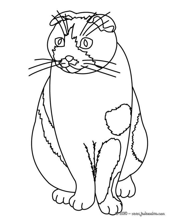 The Best Free Gratuitement Coloring Page Images Download From 4