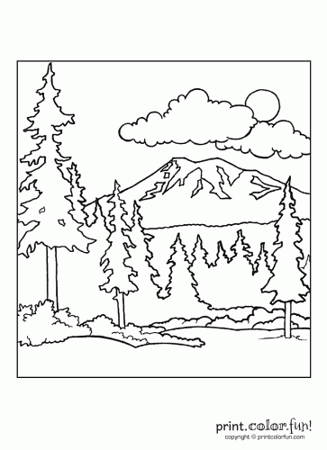 363x500 Forest Scene Print Color Fun! Free Printables, Coloring Pages