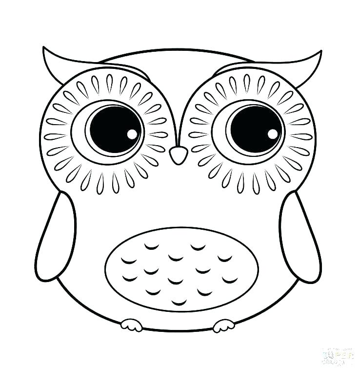 736x759 Free Printable Owl Coloring Pages Free Printable Owl Coloring