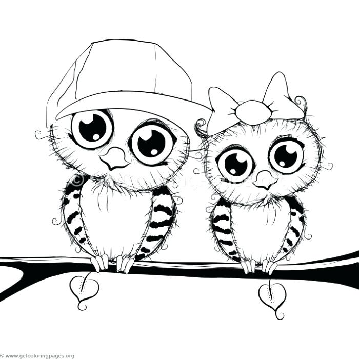 700x700 Owl Cartoon Coloring Pages Cute Cartoon Owl Couple On A Tree