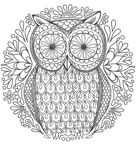 Free Owl Coloring Pages - Sablon