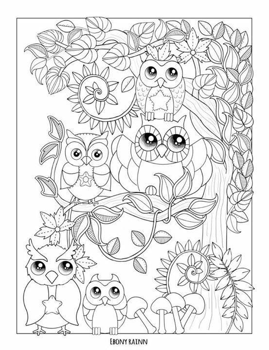 Owl Coloring Pages Colored