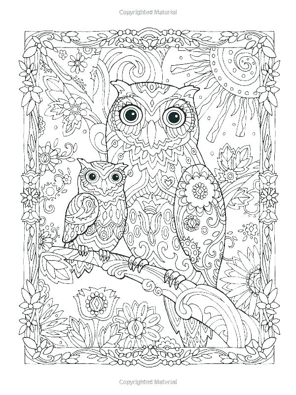 600x800 Images Of Owls Coloring Pages Picture To Color